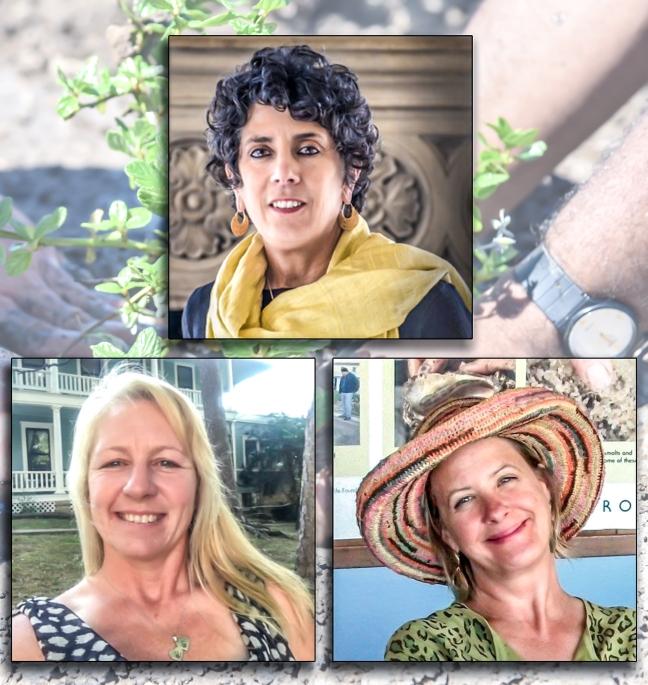 Insight Garden Speakers (2).jpg