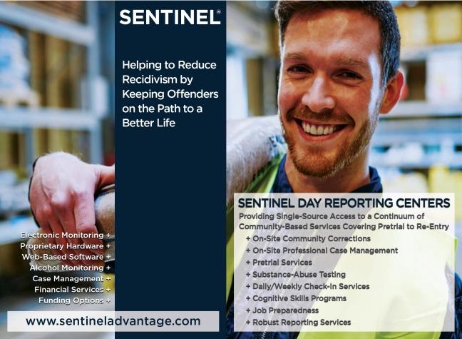 Sentinel.jpg